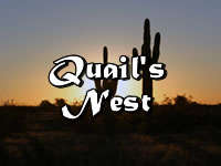 Custom Homes in Quail's Nest